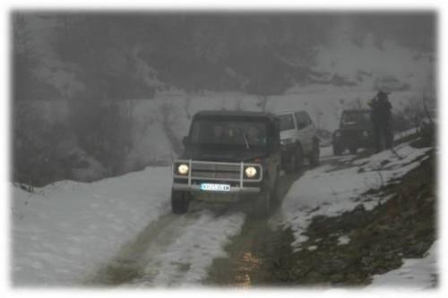 Bosilegrad : Više od stotinak domaćinstava zavejano bez struje