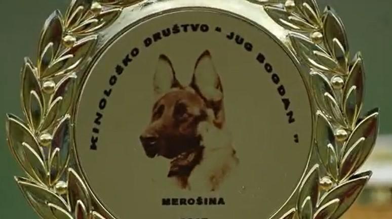 Национална изложба паса свих раса (ЦАЦ) у Мерошини