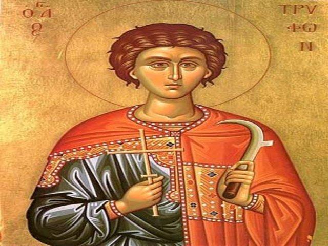 Свети Трифун, заштитник лозе и виноградара