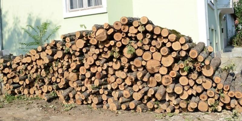 Подела огревног дрвета социјално угроженим породицама у Прокупљу