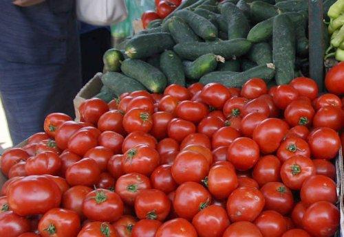 Ниш: Отворен конкурс за субвенције у пољопривреди