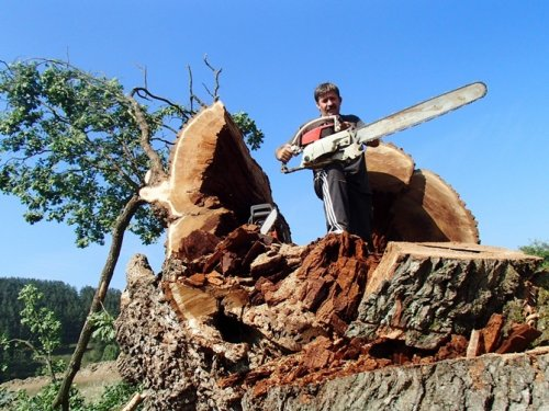 Foto: nadlanu.com