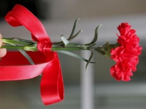 Bruka i sramota: Delili ženama cveće i molili za glasove