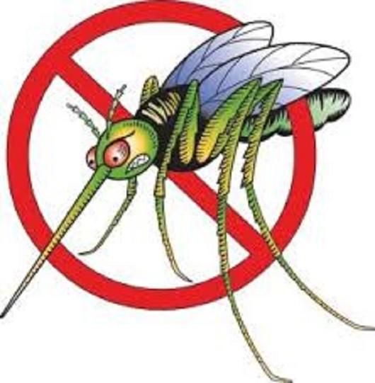 У току је треће запрашивање против комараца
