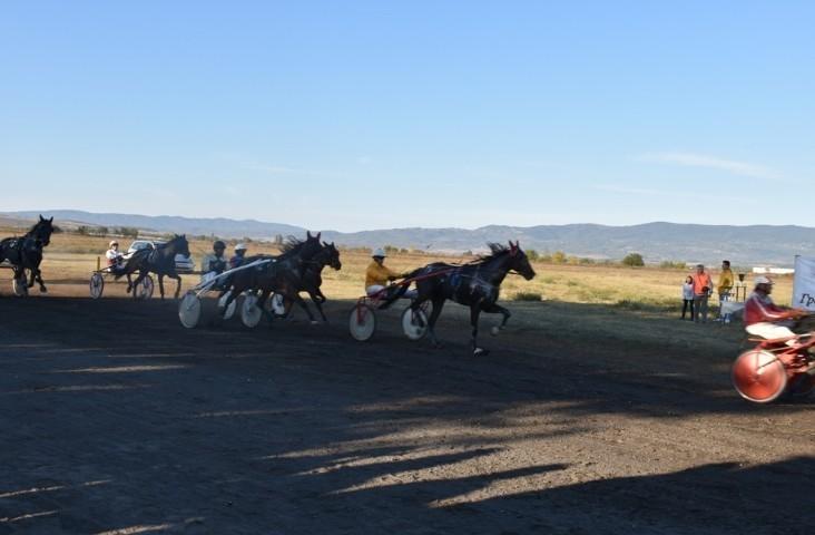 Коњичке трке на Дан града Лесковца