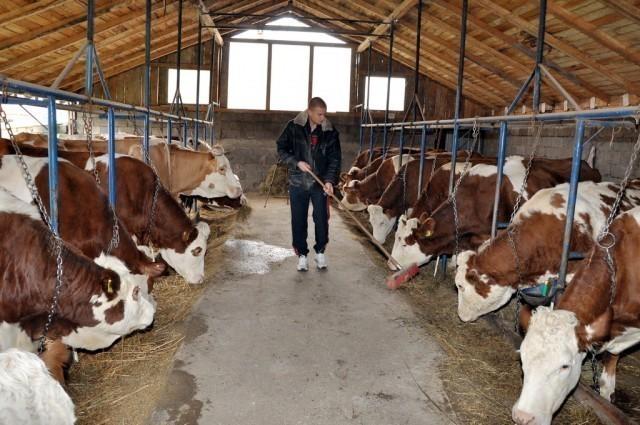 Bespovratno 7 miliona za poljoprivrednike u prokupačkoj opštini