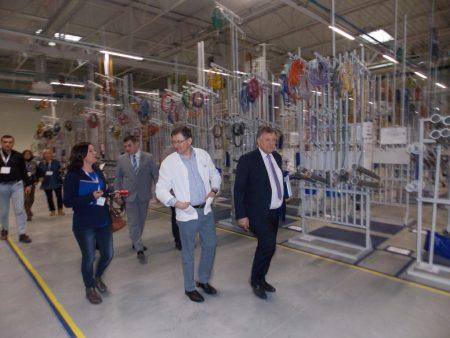 Фото: prokuplje.org.rs
