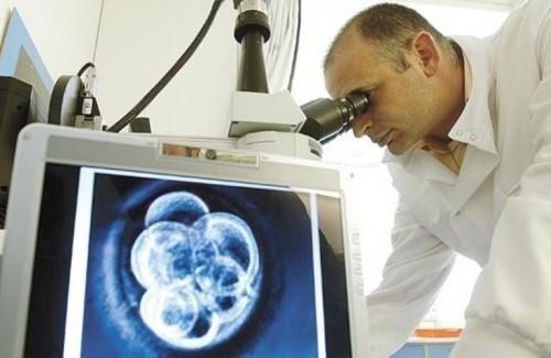 Genetičar Stojković otišao iz Leskovca, na Harvardu predvodi tim za istraživanje matičnih ćelija