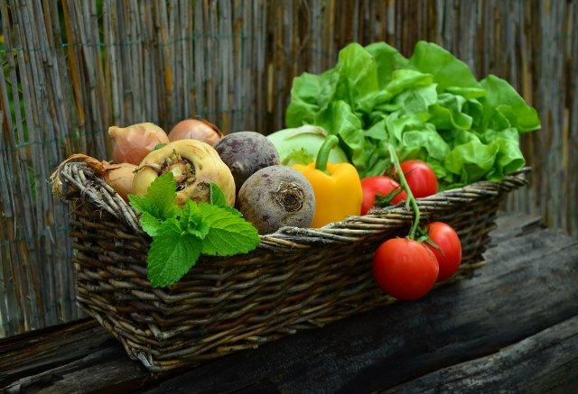 Пољопривредни кредит за покретање аграрног бизниса