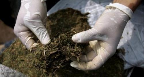 Пронађен 51 грам марихуане