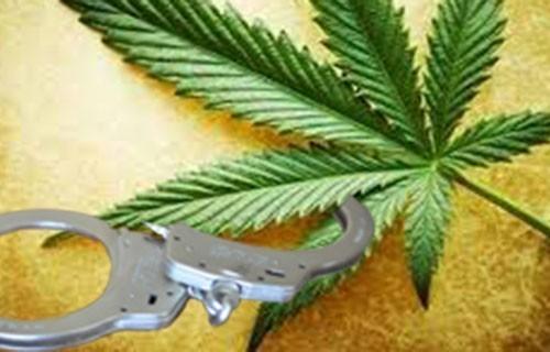 У околини Прокупља пронађани дрога и оружје