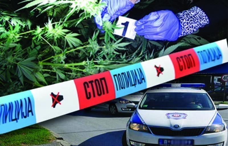 U selu kraj Leskovca, policija u vozilu Beograđanina pronašla skoro kilogram marihuane