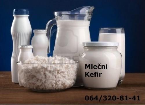 Prodajem KEFIRNA ZRNCA za pravljenje domaćeg kefira, TIBETANSKA GLJIVA