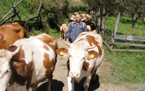 Dragojlo Miletić, foto Radoljub Gligorijevic, Foto Radoljub Gligorijević