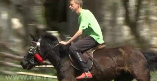 Porodična farma konja i magaraca