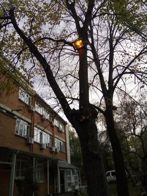 Наранџаста светла испред Градске општине Медијана, као борба против насиља над женама