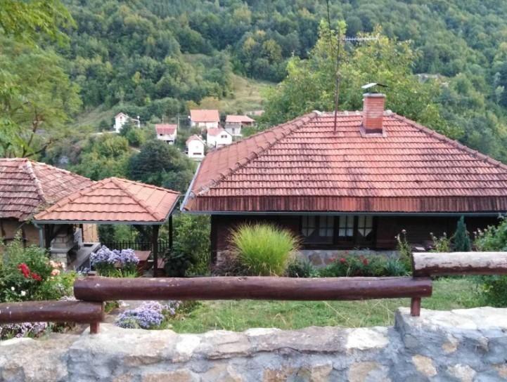 Фото: Саша Стојиљковић