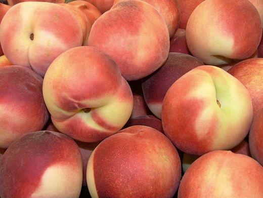 Фото илустрација: poljoinfo.com