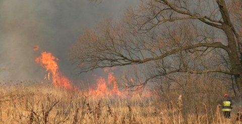 Ministarstvo apeluje - ne palite vatru!