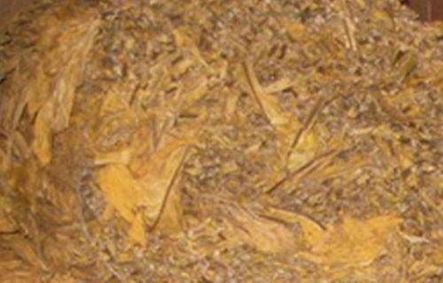U Surdulici zaplenjeno oko 100 kilograma rezanog duvana