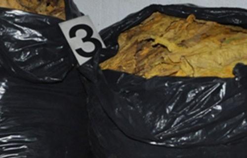 Шверц више од 500 килограма резаног дувана