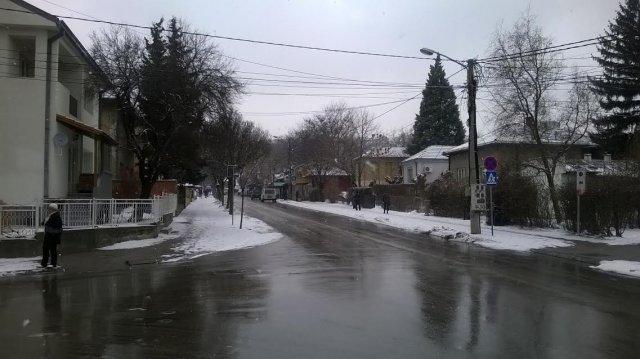Његошева улица у Нишу, Фото: Јужна Србија
