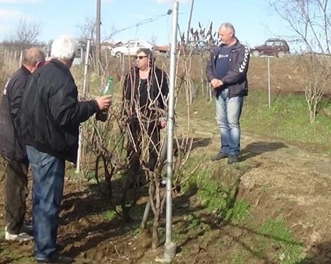 Топлички виноградари сутра обележавају свог заштитника