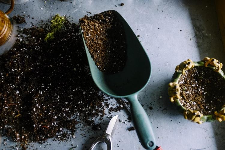 Примена агротехничких мера ради узгајања биљака